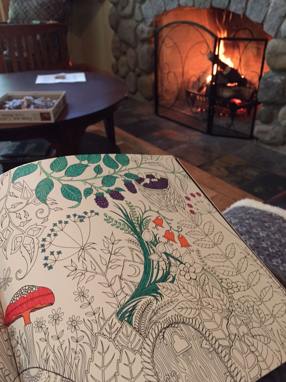Coloring By The Fire At Cabin On Memorial Day Weekend For Grown Ups Is